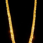22kt adorned long necklace. Perfect for low cut or backless dresses or tops.